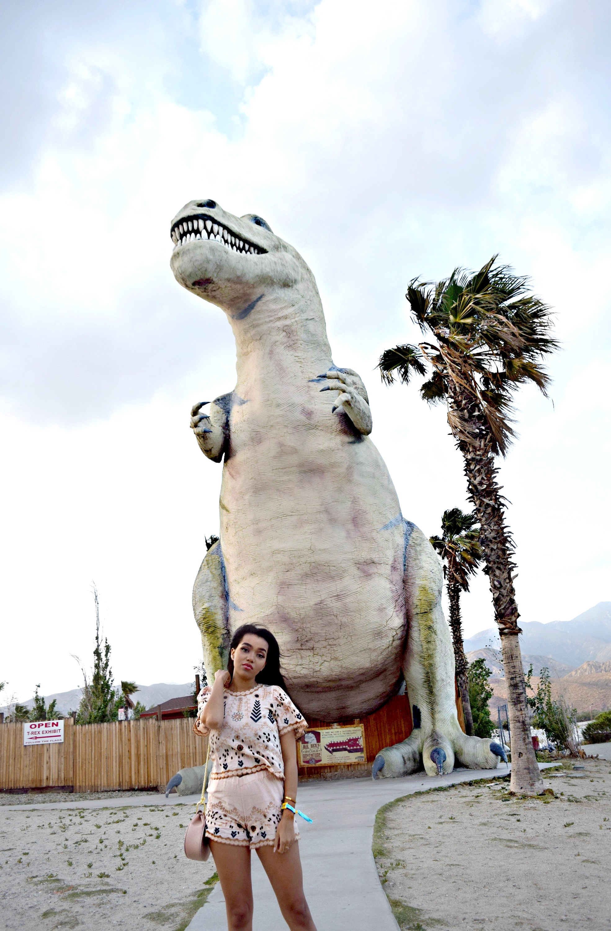 Palm Springs Dinosaurs Spring/Summer Style: To Style, With Love