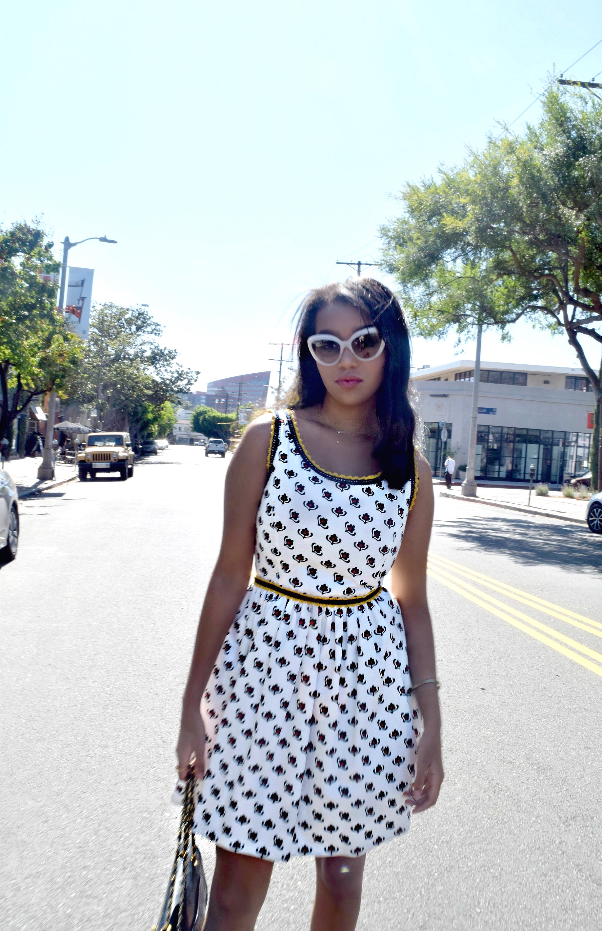 Miu Miu Fit and Flare Dress, Los Angeles Spring/Summer Street Style & Fashion: To Style, With Love